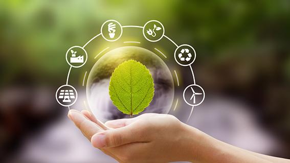 COMÉRCIOS E INDÚSTRIAS devem Protocolar o Plano de Gerenciamento de Resíduos até 30/08/2021 em Diadema